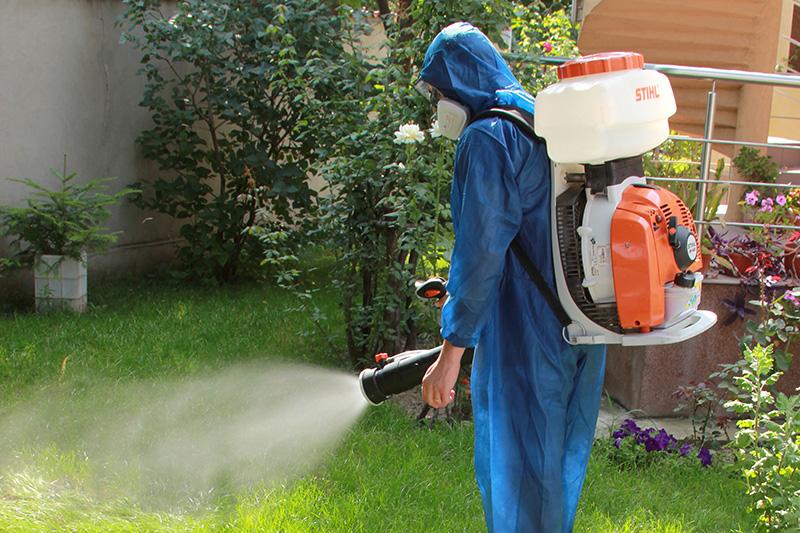 ddd - deratizare dezinsectie dezinfectie